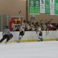 &nbsp; By Alyssa Girardi - Troy  Hundreds of youth hockey players from coast to coast flew into Troy, Mich. for the opportunity to compete for the USA...