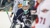 By Matt Mackinder - Even with a losing record and playing for a team that barely made the playoffs, Alex Nedeljkovic earned a top Ontario Hockey League...