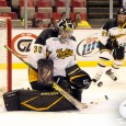 By @MichaelCaples - Frankenmuth native Josh Robinson just added an impressive item to his hockey resume. The Michigan Tech alum is the ECHL's goaltender of the year, […]