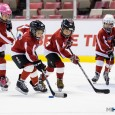 Check out our photos from Saturday's Mite Jamboree at Joe Louis Arena – a special opportunity for a collection of 8-and-Under teams to compete in cross-ice games in […]
