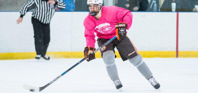 By @MichaelCaples – The Michigan Amateur Hockey Association has announced the 2000 birth-year players receiving invitations to the 2017 USA Hockey Select 17 National Player Development Camp. Congrats […]