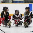 On Aug. 27 during the building's Customer Appreciation Day, Suburban Ice East Lansing hosted a 'Try Sled Hockey For Free' event to introduce disabled and able-bodied individuals alike […]
