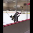 By @MichaelCaples – Oakland Jr. Grizzlies defenseman Brandon Troyer certainly knows how to make his presence felt on the ice. Check out this hit from Troyer, a defenseman […]